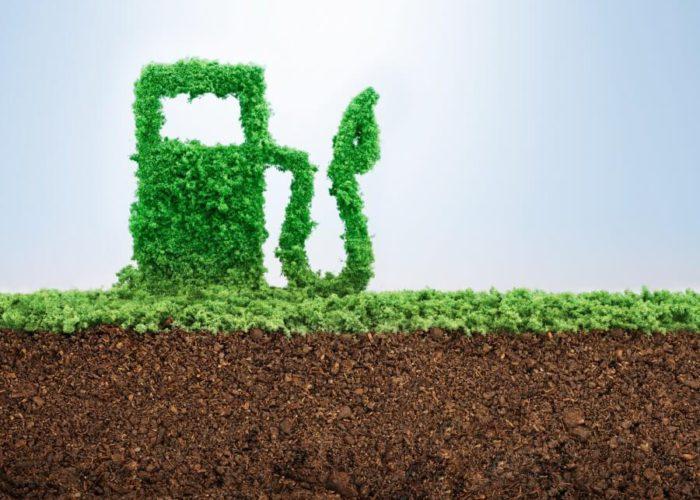 Проект «Розробка проекту критеріїв сталості для біопалива та біопаливних рідин для України