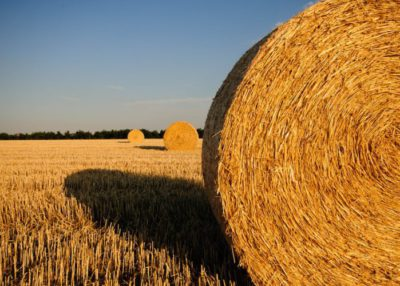 Take part in survey about heat production from agrobiomass in Ukraine